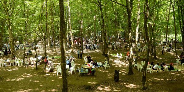 . Bağcılar için piknik vakti
